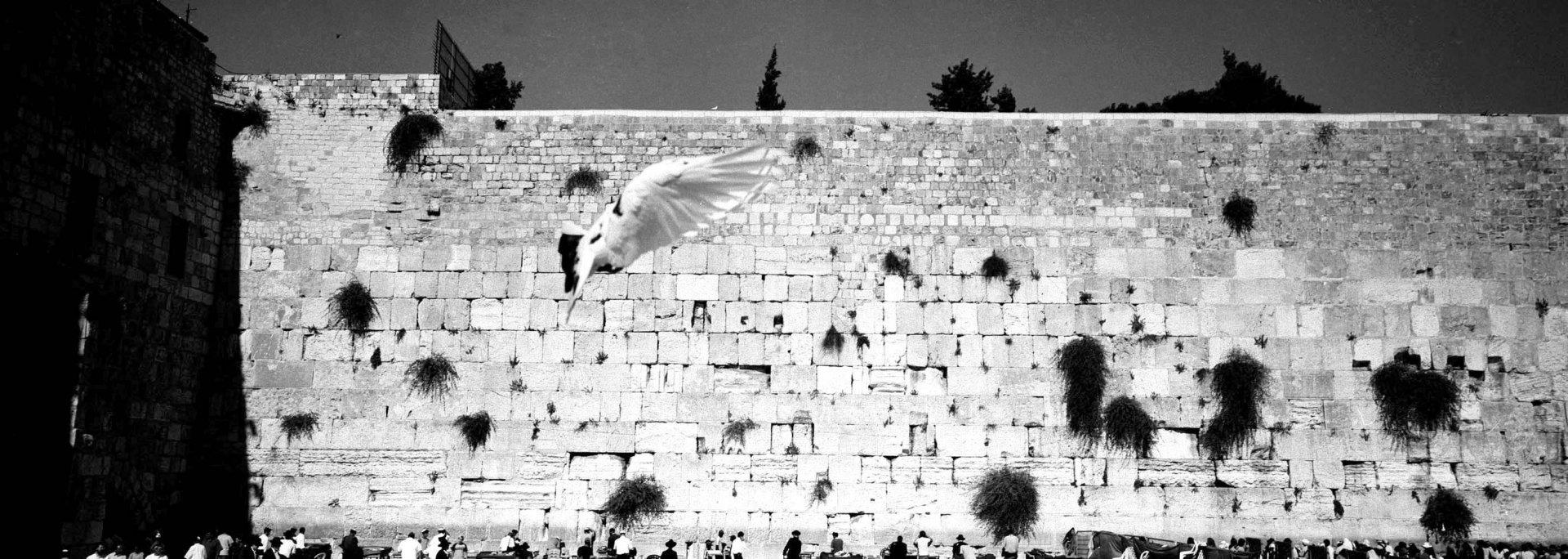 murmure, Jerusalem