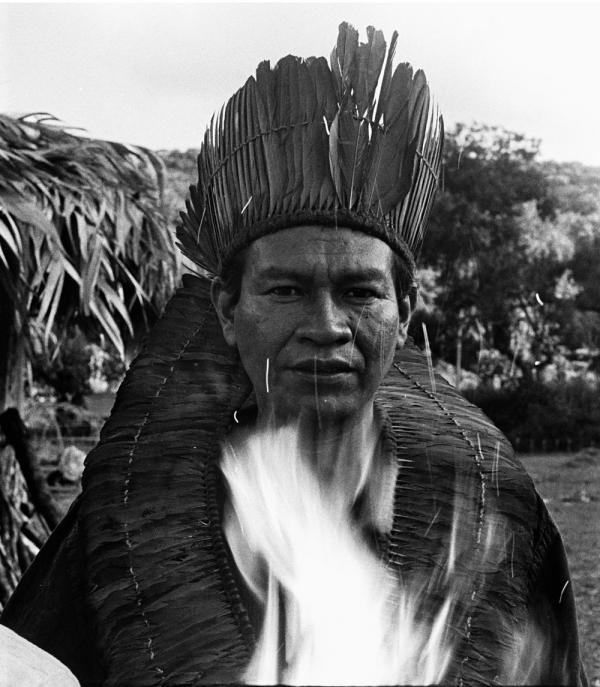 Shaman guarani 2016