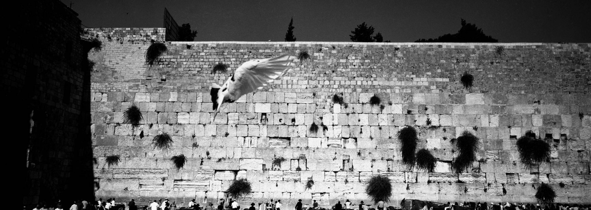 Murmure, Jérusalem 2004